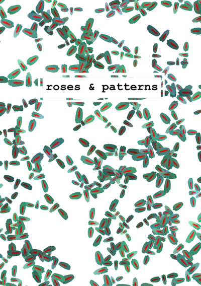 roses_and_patterns127_1bB_web